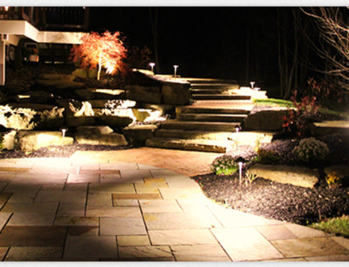 Why is My Landscape Lighting Making My Plants Look Sickly?